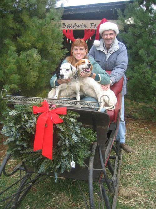 Kentucky Christmas Tree Farms