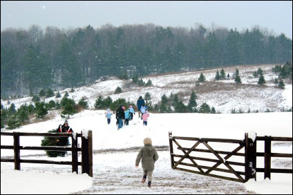 Our Gates are Open - Kentucky Christmas Tree Farm Association
