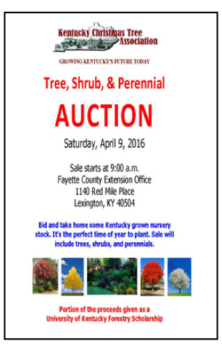 KCTA Auction 2016 Sales Flyer copy