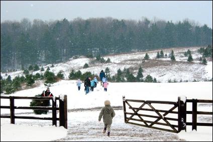 Our Gates are Open - Kentucky Christmas Tree Farm Association